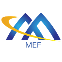 Michael Kearns appointed as co-chair of MEF LSO Committee