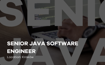 SENIOR JAVA SOFTWARE ENGINEER